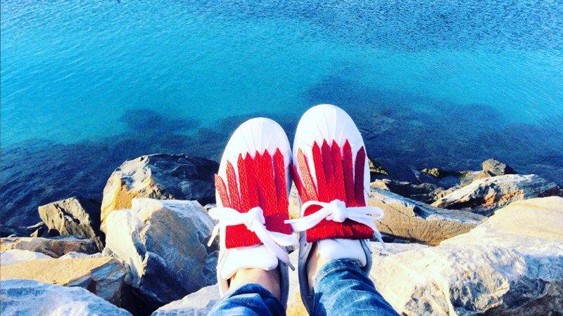 flecos zapatillas