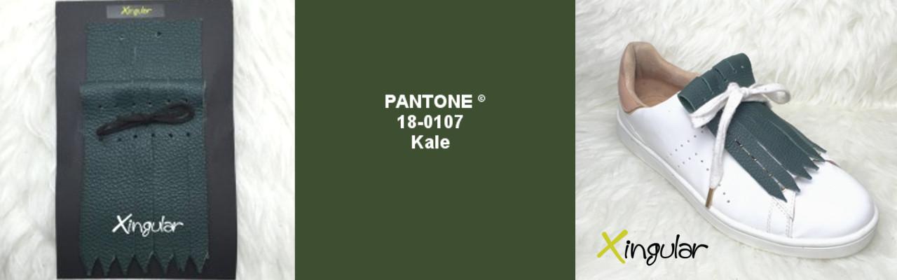 kale pantone 18-0107 xingular