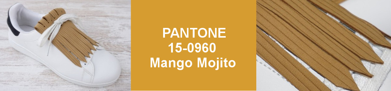 PANTONE PRIMAVERA VERANO 2019-Mango Mojito